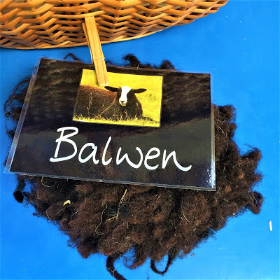 Balwen Sheep Label and Fleece