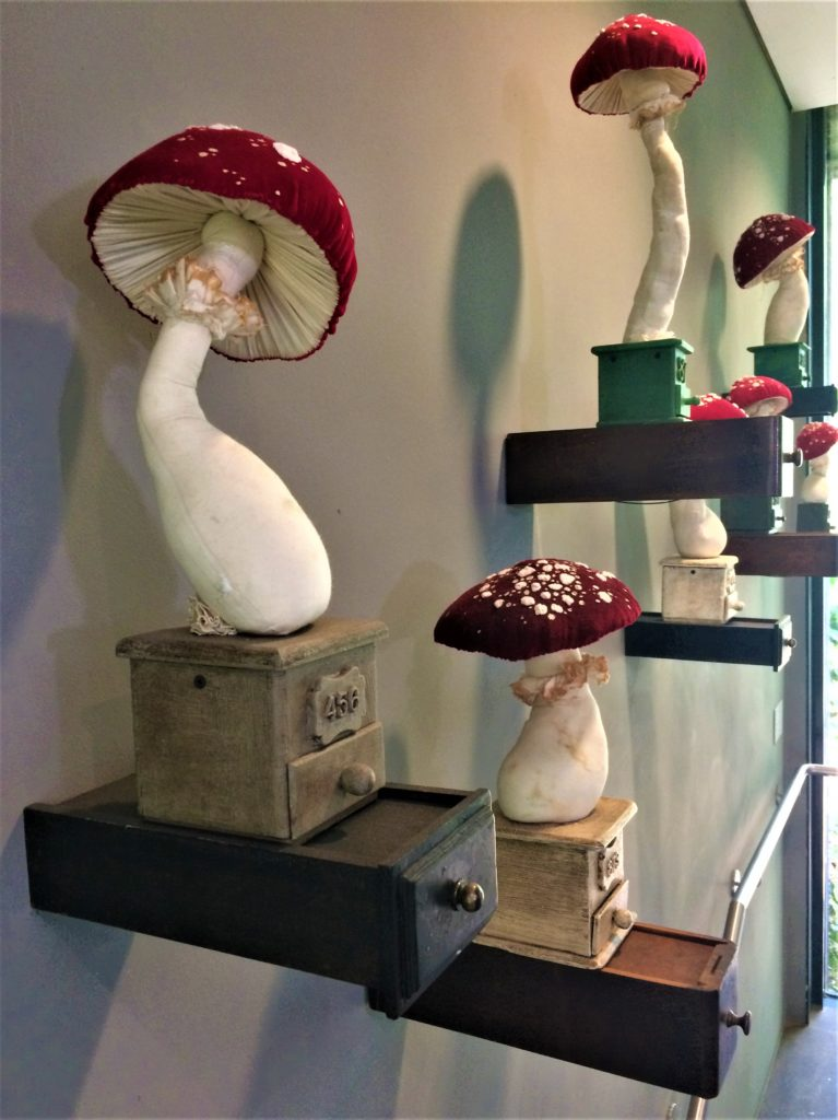 Mr Finch - Hand stitched Toadstools, rest on beautifully finished wooden plinths which float above your head as you walk up the stairs.