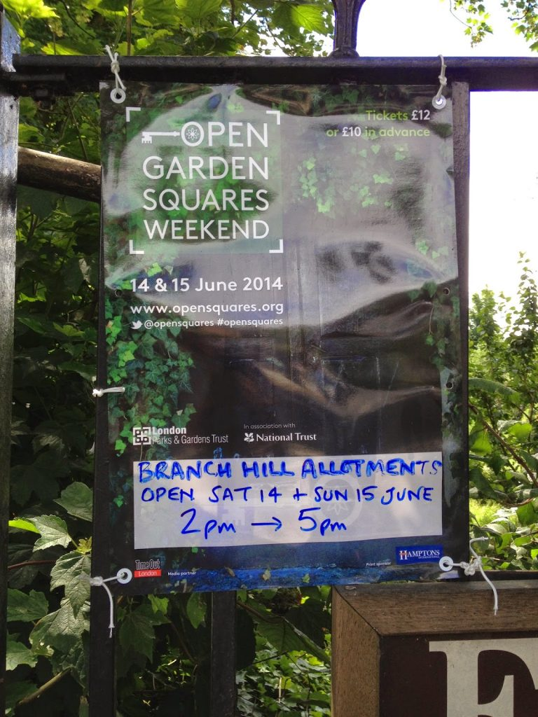 Open garden squares weekend - Branch Hill Allotments, Hampstead