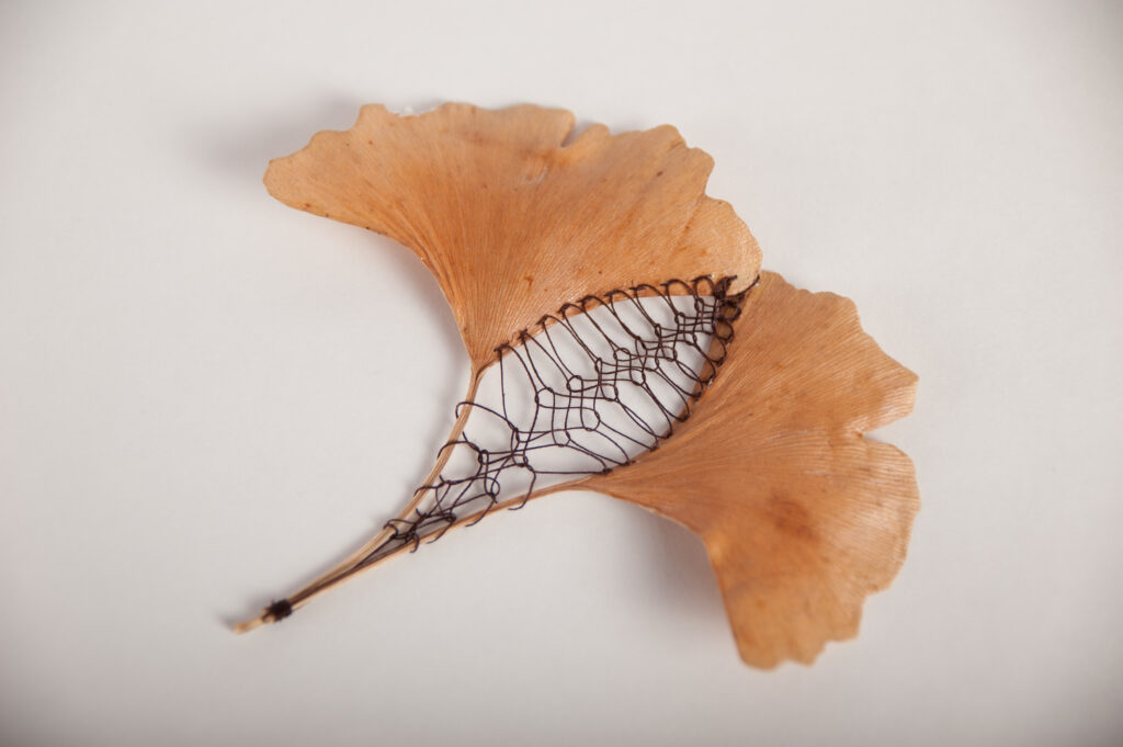 Ginko leaves embroidered using Insertion stitches by Hillary Waters Fayle